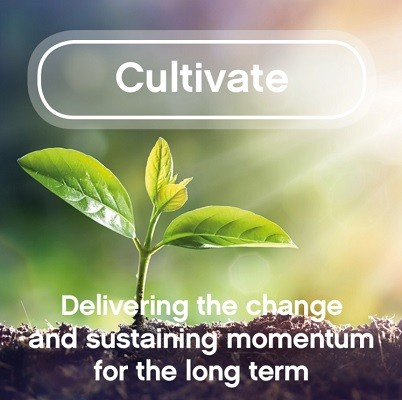 cultiavte Welcome to Tribe Culture Change