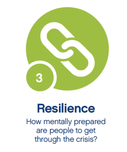resilience-252x300 From Crisis to Opportunity...