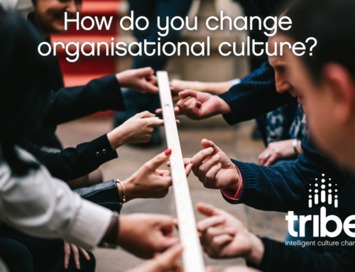 How do you change organisational culture?